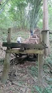 Thai path :-)