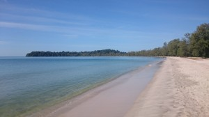 Monkey Maya beach